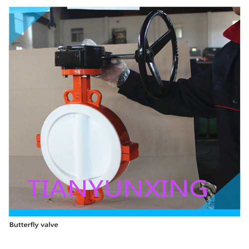 Split body Butterfly valve